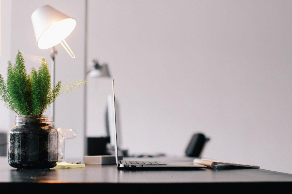 Kuvituskuva: lamppu, tietokone ja kasvi pöydällä
