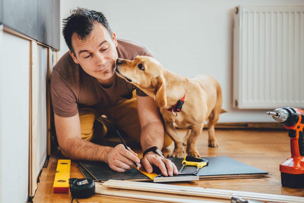 Kuvituskuva: mies ja koira tekevät remonttia